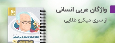 ینی میکرو طلایی واژگان سطر به سطر عربی جامع کنکور انسانی گاج